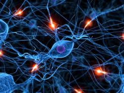 Estudo aponta sete medidas para evitar Alzheimer